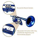 Immagine 1 eastar standard student tromba bb