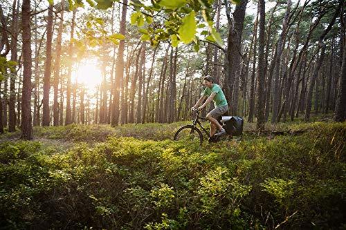 Sigma Bike Computer Sport Pure 1Wireless, 03102 Compteur vélo sans Fil
