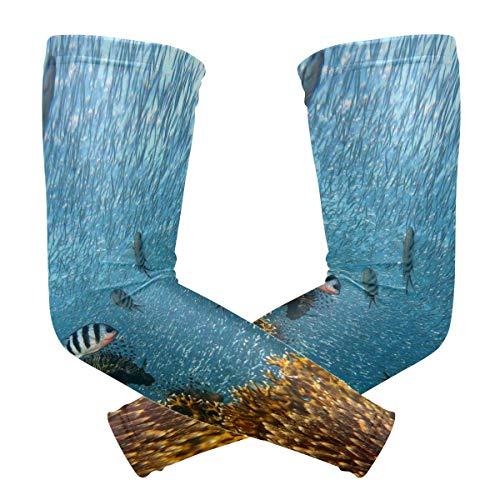 Eyliy Kühlarm Ärmelabdeckung Armwärmer Meerwasser Ozean Tauchen Unterwasser Biologie Armmanschetten Lange Armabdeckung 1 Paar
