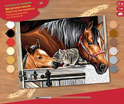 MAMMUT 8241523 - Malen nach Zahlen Senior, Pferde und Katze, Komplettset mit bedruckter Malvorlage im A3 Format, 12 Acrylfarben, Pinsel und Anleitung, großes Malset ab 10 Jahre