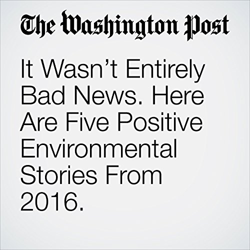 It Wasn't Entirely Bad News. Here Are Five Positive Environmental Stories From 2016. cover art
