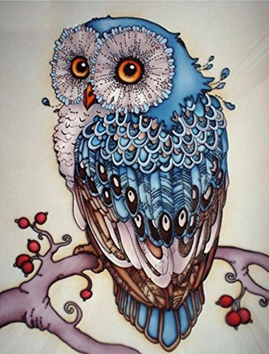 AIRDEA DIY 5D Diamond Painting Kits for Kids Full Drill Art Craft Crystal Rhinestone Embroidery for Home Wall Decor Blue Owl 30x40 cm