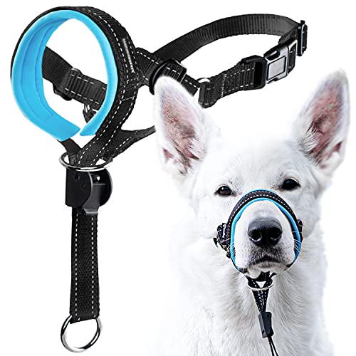 GoodBoy Dog Head Halter with Safety Strap - Stops Heavy Pulling On The Leash - Padded Headcollar for Small Medium and Large Dog Sizes - Head Collar Training Guide Included (Size 3, Blue)