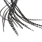 Extension per capelli in vera piuma, a righe bianche (3 piume)