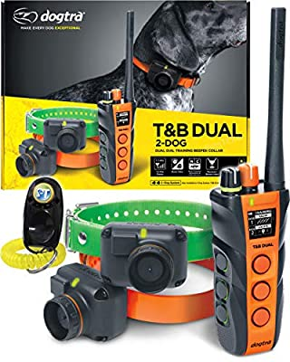 Dogtra T&B Dual Dial 2-Dogs Remote Training and Beeper Collar - 1.5-Mile-Long Range, Sports Upland Hunting, Fully Waterproof, Rechargeable, Static, Locate - Includes PetsTEK Trainer Clicker