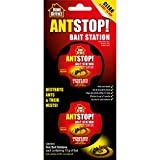 Ant Killer Indoors Review and Comparison