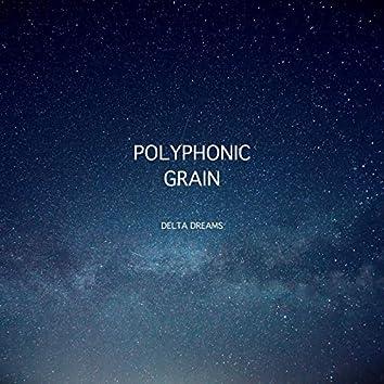 Polyphonic Grain
