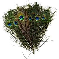 TOOGOO(R) Natural Las plumas del pavo real 10-12 pulgadas de largo (40 piezas por paquete)