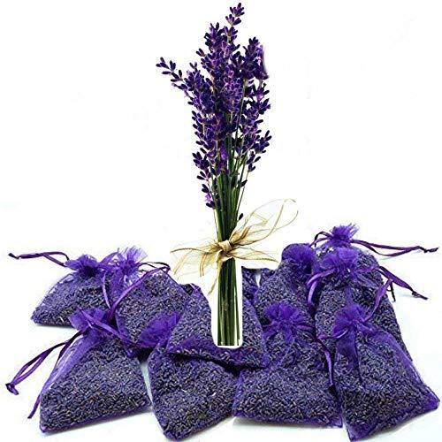 12x Lavendelsäckchen Bester frischer Lavendel - 120g Lavendelblüten Goût de Paris Duftsäckchen für Lavendelduft für Wäsche, Motten,Entspannung & Einschlafen