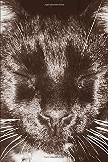 Joy Notes:  Black Cat Selfie: Lined Paper 120 Pages - 6 x 9 inches in Size : Notebook, Journal, Diary, Notepad, Diary, Organizer