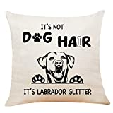 XUWELL Funny Quote It's Not Dog Hair It's Labrador Glitter Panting Cotton Linen Throw Pillow Cover, Labrador Retriever Gifts for Dog Lover, Cushion Case for Sofa Bed Home Decor 18 x 18 Inch