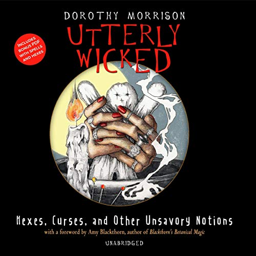 Utterly Wicked Audiobook By Dorothy Morrison cover art
