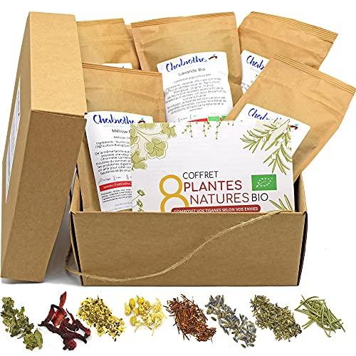 Coffret infusion BIO à composer soi même - 350g de plantes + livret + filtres - fabriqué en France et sachets biodégradables