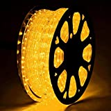 DELight Outdoor LED Rope Lighting 150ft Saffron w/ Connector