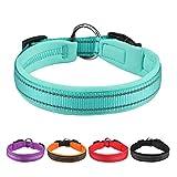 Hundehalsband Verstellbare, Gepolstertes Neopren Nylon Reflektierend Hunde Halsband Atmungsaktives für Welpen Kleine Mittlere Große Hunde - Blau - S