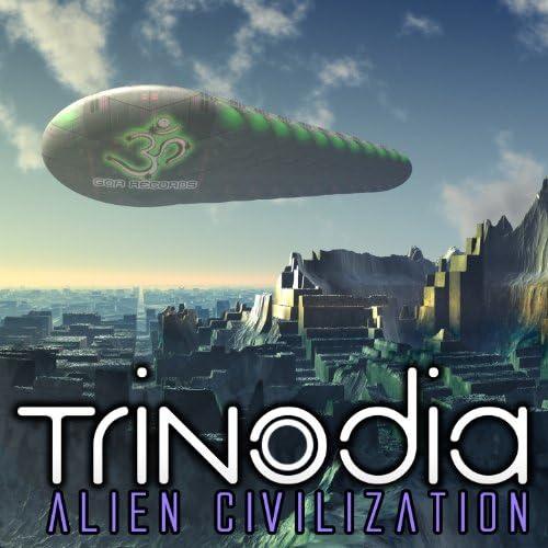 Trinodia