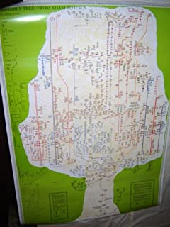 Best biblical family tree chart Reviews