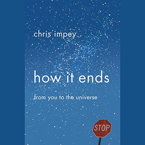 How It Ends  audiobook cover art