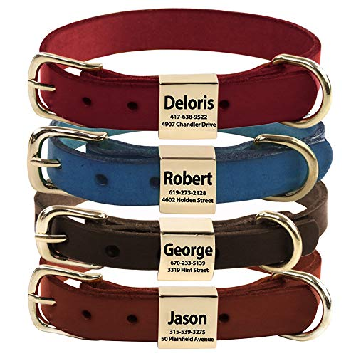 Personalized Custom Dog Collar Leather, Soft, nameplate pet Collar Lettering Small and Medium-Sized Dogs Leash Dog (Medium)