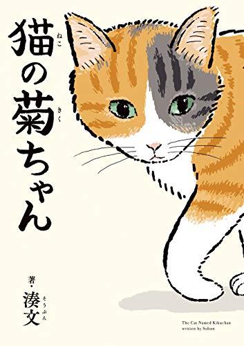 猫の菊ちゃん - 湊文