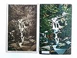 2 Postkarten: Steinerne Renne bei Wernigerode a. Harz