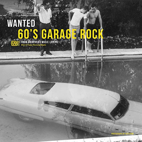 Wanted 60'S Garage Rock [Vinyl LP]