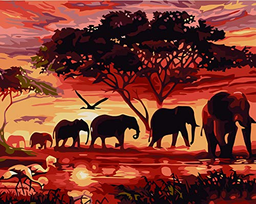 Paint by Numbers for Adults, PBN Canvas Oil Painting Kits Elephant DIY Acrylic Painting by Number Beginners with Brushes and Acrylic Pigment 16x20 Inch