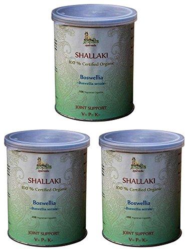 Shallaki Bio gélules végétales (3 paquets de 108 gélules) - Boswellia serrata 500 mg par capsule | Plante ayurvédique traditionnelle - 100% certifiées biologiques UE