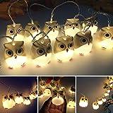 FENSIN LED Lichterketten Weihnachten Deko Halloween USB Eule Lichter String Party Garten Dekoration Lichter String für Zimmer Innen Außen Home Party Hochzeit DIY