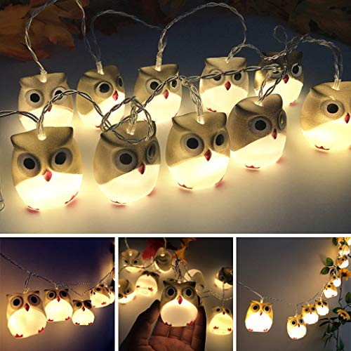 Shan-S Halloween Owl LED String Lights,Horror Fantastic Indoor/Outdoor Ghost Lamp for Halloween Party,Christmas,Carnival,Celebrations and Special Occasions Haunted House Decoration