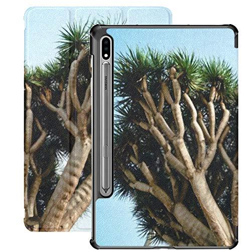 Funda Galaxy Tablet S7 Plus de 12,4 Pulgadas 2020 con Soporte para bolígrafo S, Dragon Tree Tenerife Biggest Dracaena España Funda Protectora Tipo Folio con Soporte Delgado para Samsung