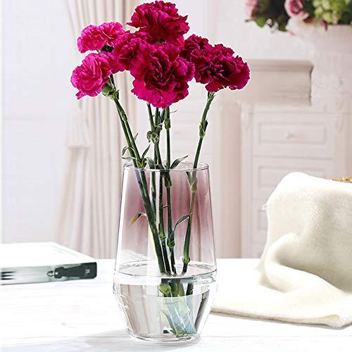 Glasblumenvase, Ins Style Kristallklare Vase Dekorative Vase, Handgemachte Blumenblume Pflanzenbehälter Terrarien Glasvase für Blumen Hydroponik Pflanze, Hochzeit Einweihungsparty Home Office Dekor