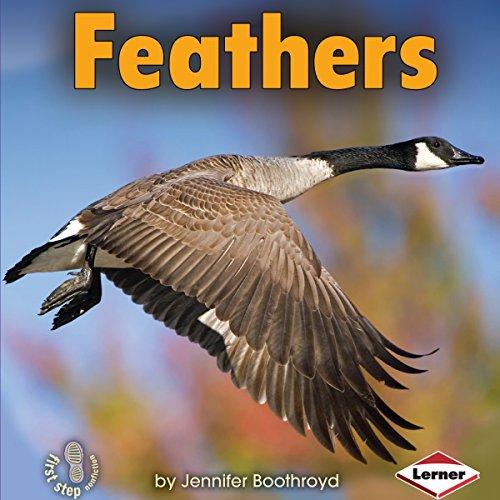 Feathers copertina