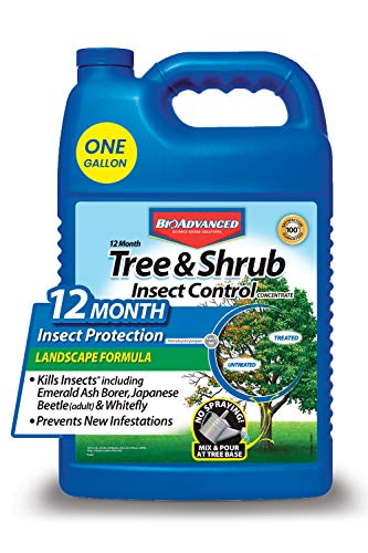 BioAdvanced 12-Month Tree and Shrub Insect Control, Insect Killer and Fertilizer, 1-Gallon, Landscape Formula Concentrate 701525A