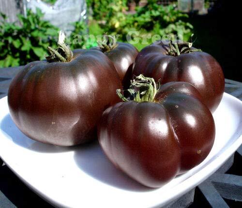 VEGETABLE BLACK TOMATO - 60 SEEDS - BLACK PRINCE - Tomato seeds - Heirloom
