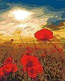 YUHHGFK DIY Pintura por Números Amapolas Rojas Pint por Número de Kits con Pinceles y Pinturas para Adultos, niños y Principiantes Decoraciones Hogar - 40 X 50 cm (Sin Marco)