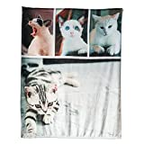 Personalized Throw Blanket Custom You Picture Print Super Soft Flannel Suitable for Pets and Family Photo Birthday Gifts Wedding Gifts 32X48in