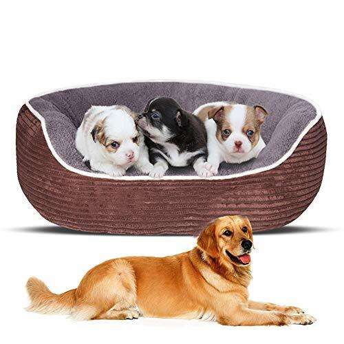 miaosss hoogwaardige warmte hondenbed gestreepte pluche orthopedische hondensofa wasbare pluche hondenmand met afneembare overtrek hondenkussen, antislip koffie-L
