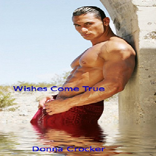 Wishes Come True audiobook cover art