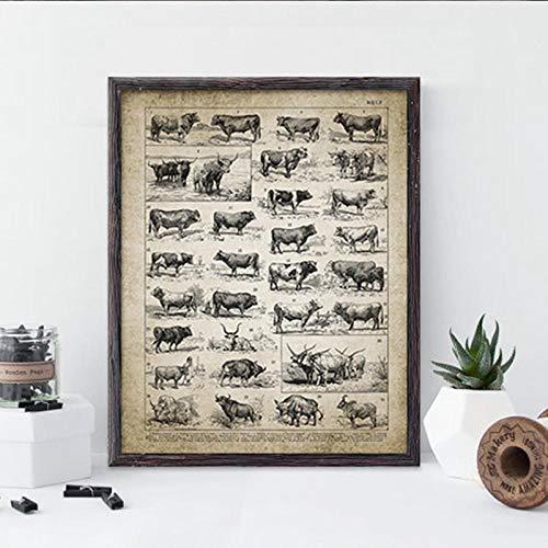 KBIASD Kunstdruck mit antikem Bullrassen-Motiv, Rinderrassen-Motiv, Vintage-Poster, Kuh-Rassen, Landwirtschaft, Wandkunst, Leinwandbild, Heimdekoration, 50 x 70 cm, ungerahmt