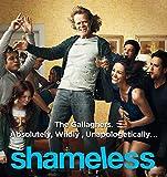 14inch x 15inch/35cm x 37cm Shameless Season 7 Silk Poster