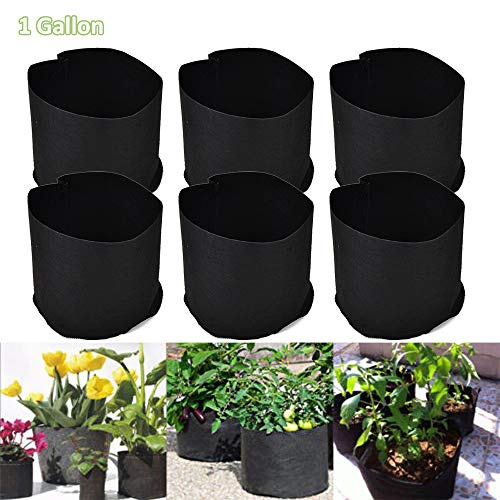 3 Gallon 6pcs//Pack Black Fabric Grow Pots Bags for Hydroponic Plant Growing