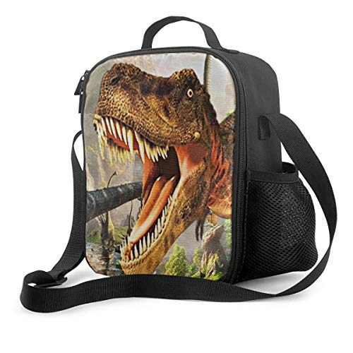 Animal Dinosaur Cat Shark Husky and Dolphin Insulated Lunch Box Cooler Bag for Boys Girls School Travel Picnic