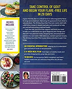 The 28-Day Gout Diet Plan: The Optimal Nutrition Guide to Manage Gout #2