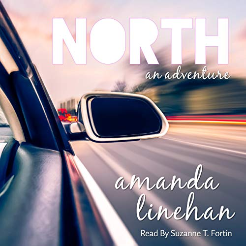 North: An Adventure audiobook cover art