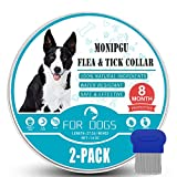 Best Tick Collars - Flea and Tick Collar for Dogs,2 Pack,Natural Flea Review