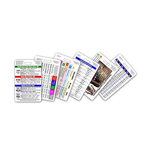 Mini CNA/MA/Tech Vertical Badge Card Set - 6 Cards