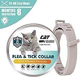 sonbrille Zeckenhalsband für Hunde,Floh Zeckenhalsband,Zecken Halsband für Katze, Wasserdicht Einstellbar Anti Floh Halsband zum Die Meisten Hunde Katzen