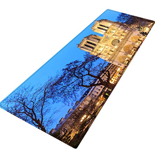 ZEELIY Antirutschmatte Teppichunterlage Teppichstopper Rutschschutz für Teppich Teppich Antirutsch Rutsch Stop Notre Dame de Paris Pattern Square Bereichswolldecke Fleece Kitchen Bathroo 40X120CM