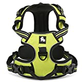 fiE FIT INTO EVERYWAY Range Of Front Side No Pull Dog Harness Outdoor Adventure 3M Reflective Pet Vest with Handle Adjustable Protective Nylon Walking Pet Harness Green M